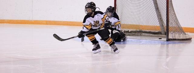 Winter Carnvial Hockey 6