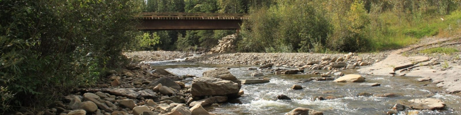 Gething Creek (9)