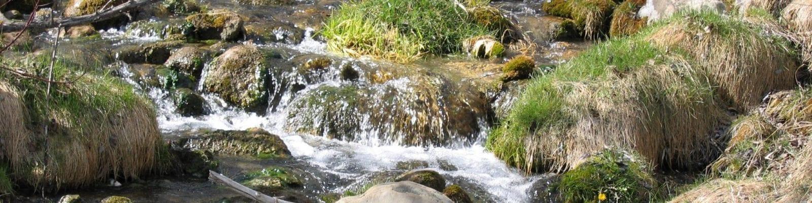 creek (1)