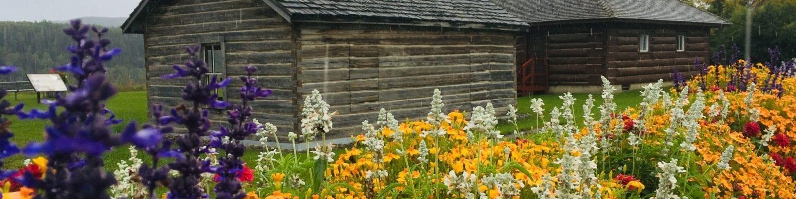 Flowers Museum – Catherine Herbison
